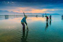 Vietnã / Dê um mergulho na simplicidade asiática e na força das tradições milenares do sudeste do continente. No Vietnã, cativam as paisagens formadas por praias, paisagens verdejantes e extensos e intermináveis campos de arroz. Sem falar no charme da herança da França colonial.