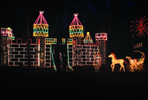 The Long Island Holiday Season / Here on Long Island it seems like every village has some unique way of celebrating the coming of winter and its holidays, with tree lightings, house tours, light arrangements, festivals and fairs.