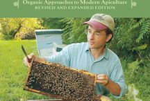 Bee Keeping / by Kim Ohrling