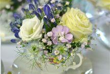 꽃 / 꽃 이미지