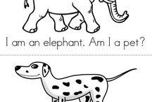 Preschool Theme - Pets