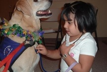 Therapy Pets offer unconditional love! / by Christine Hamel