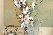Cotton  / by Lauren Adair Cooper