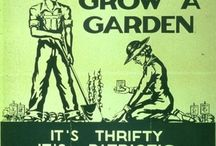 How does your garden grow? / by LeAnne Moon Thwing