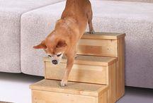 hund trappa