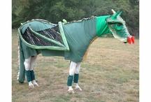 HORSE COSTUMES / Horse costumes. Horse and rider costumes.