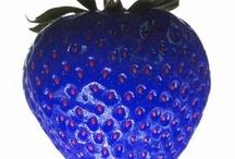Bär och frukter