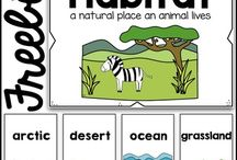 Habitat lessons