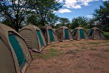 The roof of Africa #Kilimanjaro #Tanzania