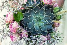 Wedding - winter flowers