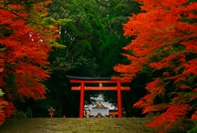 Kirishima Japan
