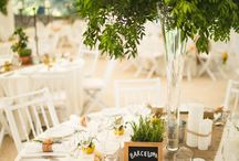 John n zena's Orange/ Spanish wedding
