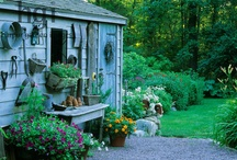 Gardening / by buds 'n bloom design studio