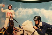 Mervue Equine / Alimentazione ed integratori per cavalli