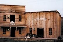 Dog Houses / by Nat Ellena
