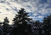Hello Winter ❄️