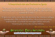 Comentários Bíblicos / Comentários de Bíblias de Estudos