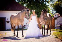 Nevěsty z Benic