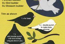 Blossom builder punch / by Kaye Whiteman