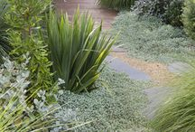 Australian Designed Gardens