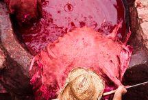 Heti's Colours  Fushia