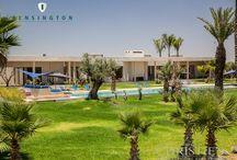 Villa de Luxe Marrakech / Nous proposons de magnifiques villas, riads, penthouses et appartements spacieux dans tout le Maroc. Nous collaborons également avec des propriétaires qui ne souhaitent pas mettre en avant leur bien.