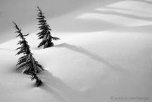 art - shadows / by Tnger Cloe