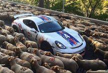 Porsche My Love