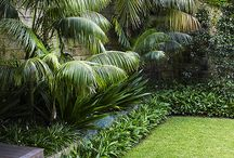 Garden Jervois