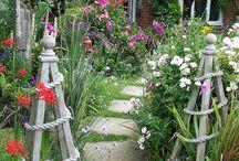 Hage / Cotton garden