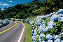 Gramado y Canela.  Brasil