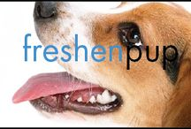 Visit Tailspin Dog Spa