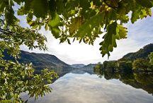 Natuur / De Britse natuur is onovertroffen. Alle seizoenen zijn er prachtig en het land telt vele Nationale Parken. Klik door op de foto's en je komt terecht op het DFDS blog, waar we je nog veel meer vertellen over de indrukwekkende Britse natuur.