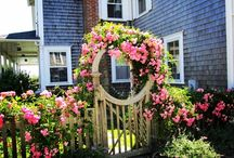 Curb Appeal / Home ideas for the outside  / by Amberlee Martin