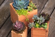Planter - Wood
