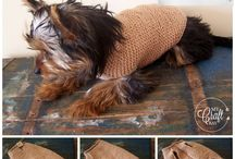 Köpek kıyafetleri