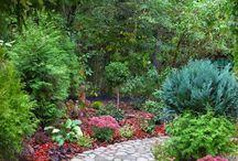 Zahradní inspirace / Zahradní inspirace