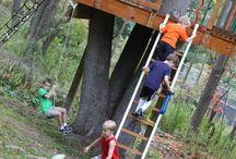 Treehouse & swing...