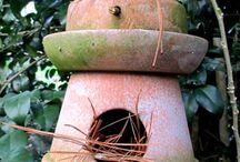 madáretetők, -odúk