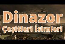 Dinazor isimleri, Dinazor çeşitleri