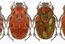 Käfer * Beetles
