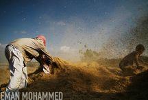 Eman Mohammed / http://photoboite.com/3030/2013/eman-mohammed/
