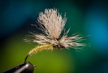 Flyfishing & places I've fished!!! / by Mary (Darden) Feddersen