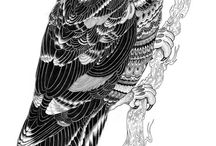 Ptaki-kolorowanki