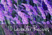 Lavender DIY Recipes
