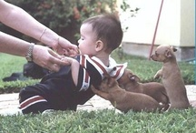 Babys and pets - love