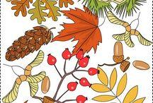 MŠ Podzim