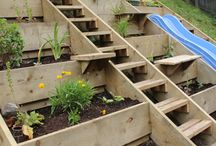 Terraced garden ideas