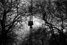 Photography by Clara Pozzetti / London