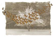 Monarch Art and Design!